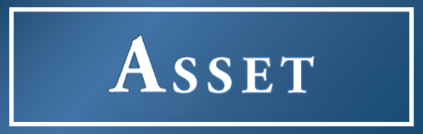 assistant asset manager